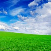 field and beautiful white fluffy clouds poster