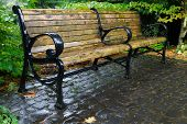 Wet wood and black painted metal bench in perspective on a brick patio