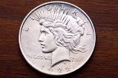 Usa Peace Silver Dollar