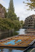Punts auf der Cam, Cambridge