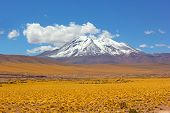 Panoramic Landscape With A Snow Peak Of Volcanic Mountains And Yellow Grass Fields Of The High Altit poster