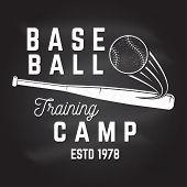 Baseball Training Camp On The Chalkboard. Vector Illustration. Concept For Shirt Or Logo, Print, Sta poster
