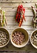 Healthy Vegetarian Food. Collection Of Beans. Freshly Harvested Beans Variety. Beans On Table poster