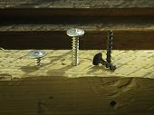 The Bolts And Screws On A Wooden Work Bench.concept Of Diy And New Screws Or Bolts.working Tools In  poster