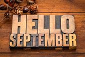Hello September - word abstract in vintage letterpress wood type blocks against grunge wooden backgr poster