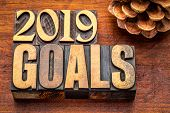 2019 goals banner - New Year resolution concept - text in vintage letterpress wood type printing blo poster
