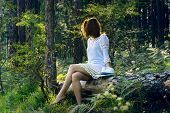 Beautiful Girl In The Forest. Young Beautiful Girl Sitting In The Forest On The Tree Trunk. Beautifu poster