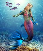 Coral Reef Mermaid 3d Illustration - A School Of Blue Rockfish Swim Along Side Of A Beautiful Mermai poster