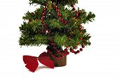 image of gilf  - One green christmas tree and red garland - JPG