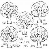 Set Of Fruit Orchard Trees: Apple Tree, Pear Tree, Orange Tree, Lemon Tree And Cherry Tree. Black An poster