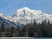 Mt Robson In Winter