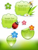 Spring design elements: honey bee, ladybug, flowers and labels