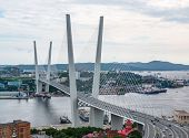 Panoramic View On The Zolotoy Golden Bridge Is Cable-stayed Bridge Across The Zolotoy Rog Or Golden  poster