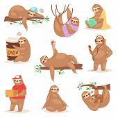 Sloth Vector Slothful Animal Character Playing Or Sleeping In Slothfulness Illustration Set Of Lazy  poster