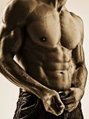 stock photo of incognito  - Sexy black and white torso of muscleman - JPG