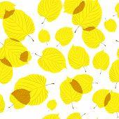 Padrão sem emenda de folhas de outono sobre o fundo branco