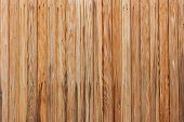 Natural Wood Texture Background