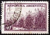 Postage stamp Argentina 1936 Field of Sugar Cane
