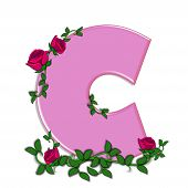 picture of climbing roses  - The letter C in the alphabet set Blushing Roses is soft pink - JPG