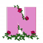 stock photo of climbing roses  - The letter N in the alphabet set Blushing Roses is soft pink - JPG