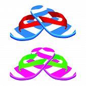 Flip Flop Vector Illustration