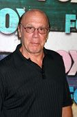 LOS ANGELES - JUL 23:  Dayton Callie arrives at the FOX TCA Summer 2012 Party at Soho House on July