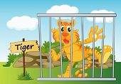 illustration of a tiger in cage and wooden board