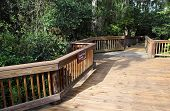 Cypress Boardwalk