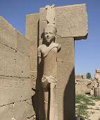 Statue Around Precinct Of Amun-re