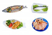 Fresh Seafoods Isolated