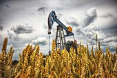 stock photo of minerals  - Oil pump Oil industry equipment industrial machine for petroleum - JPG