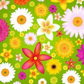 Summer Flowers Background With Gradient Mesh, Vector Illustration