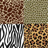 picture of jungle snake  - Seamless Animal Skin Pattern set - JPG