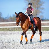 stock photo of bridle  - The horsewoman on a red horse - JPG