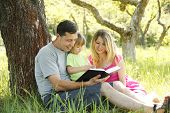stock photo of scriptures  - Young family reading the Bible in nature - JPG