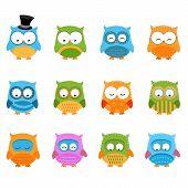 Retro Owl Set