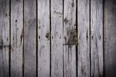 The Wood Texture With Natural Background