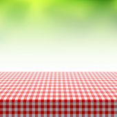 Picnic table covered with red checkered tablecloth. Vector.
