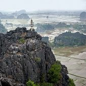 Amazing Panorama View Of The Rice Fields. Ninh Binh, Vietnam