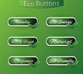 Bio Eco Buttons