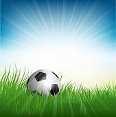 Illustration of a football or soccer ball nestled in grass