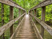 stock photo of appalachian  - A wooden footbridge on the Appalachian Trail provides safe crossing for hikers over a river - JPG