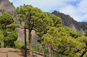 Caldera de Taburiente in La Palma, Canary islands, Spain.