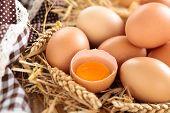 Farmers Eggs.