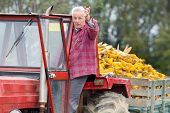 Senior Man In Tractor