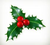 stock photo of christmas greetings  - Holly - JPG