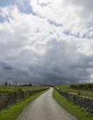 Thunderstorm Above Vinyard And Road Saint-emilion