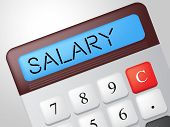 Salary Calculator Shows Pay Salaries And Calculate