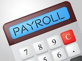 Payroll Calculator Shows Earns Payday And Salaries