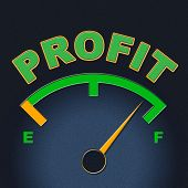 Profit Gauge Indicates Measure Indicator And Earn